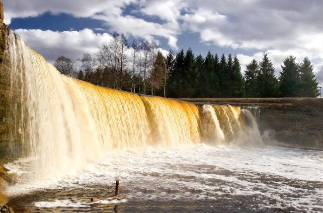 Największy wodospad w Estonii, wysoki na 7,2 metra. W średniowieczu był miejscem kultu. Zdj. Imre Klaasen.