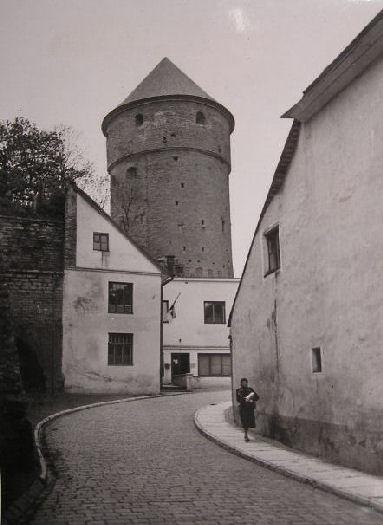 Dawna Estonia