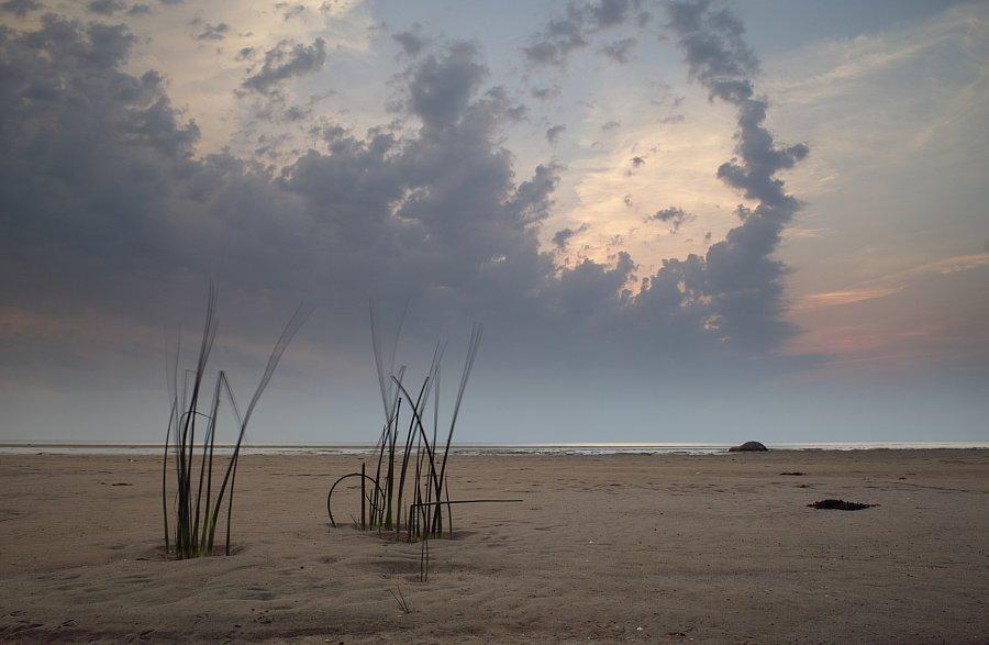 Estonia 2010 – Dziennik podróży
